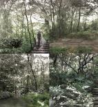 Ekologické výukové a rekreační centrum Banderilla - zahrady - foto © Holcim Foundation