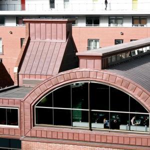 Kriterion Conservation Architects - Hamilton House - nadhled -  foto © Kriterion Conservation Architects